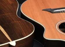 Breedlove Journey series acoustic guitars