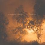 Mandolin Orange 'Blindfaller' album cover