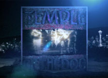 Temple Of The Dog 'Black Cat'