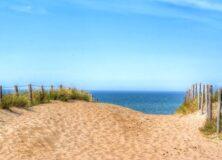 beach-2279082_640