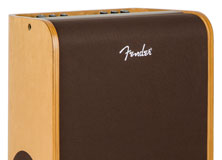 Fender Acoustic Pro and Acoustic SFX