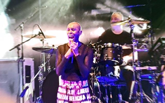 Skin: Skunk Anansie frontwoman