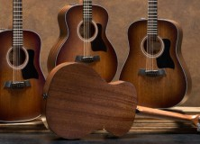 Taylor Guitars Special Edition 300 series models