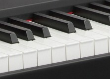 Yamaha P Series Digital Pianos